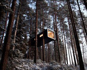 Дом на деревьях